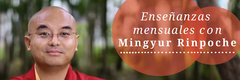 Enseñanzas mensuales con Mingyur Rinpoche