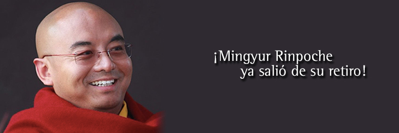 mingyur-retiro
